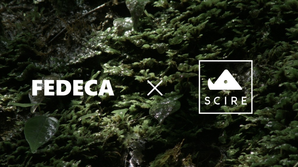 FEDECA × SCIRE